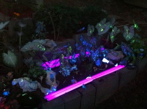 Blacklight Reactive Garden